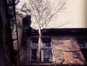 Historisches olympisches Dorf 1936, Elstal